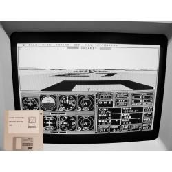 Flight Simulator (400k)